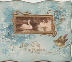 JOY WING THE HOURS in gilt, forget-me-not design around swans in gilt framed inset, bird perched below