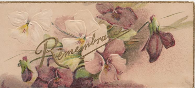 REMEMBRANCE in gilt across white & purple pansies, 3 gilt edges