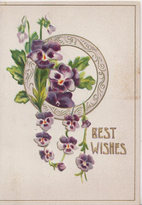 BEST WISHES purple pansies through & in front of circular window