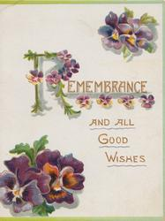 REMEMBRANCE(R illuminated) AND ALL GOOD WISHES multicoloured pansies above & below