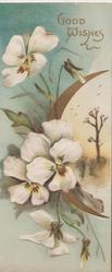GOOD WISHES in gilt, white pansies left, sliver of gilt moon round small rural inset