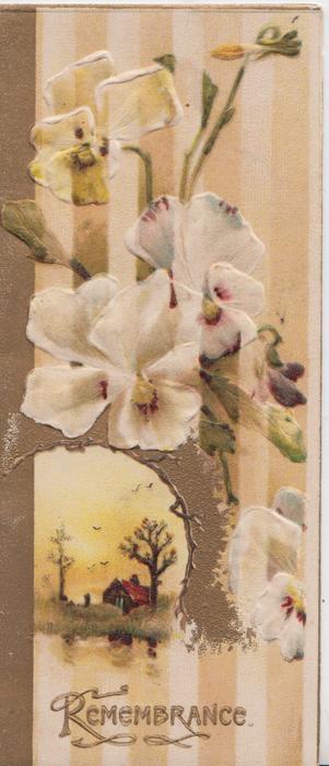 REMEMBRANCE in gilt below yellow/white pansies & small rural inset, striped background
