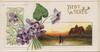 BEST WISHES above rural inset, violets left, perforated green & gilt design,