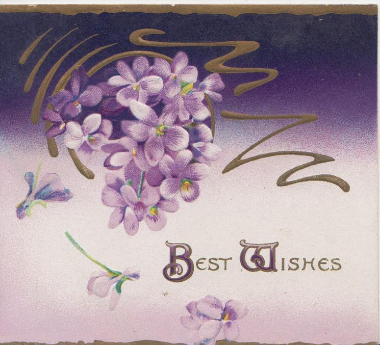 BEST WISHES(B & W illuminated) below violets & design, 2 gilt edges, purple background
