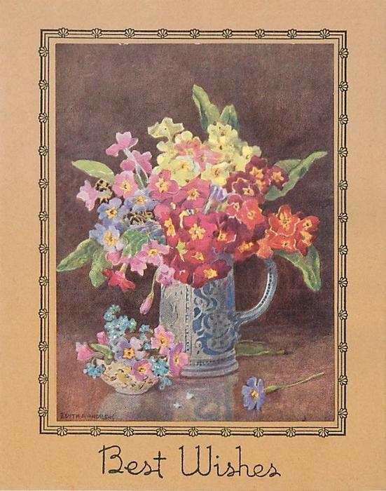 BEST WISHES below jug & small dish filled with variously coloured primroses, black floral border