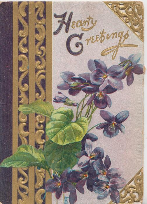HEARTY GREETINGS(H &G illuminated) above violets & heavy purple & gilt designs, 2 perforated corners