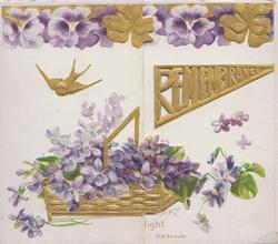 REMEMBRANCE in gilt perforated design on right flap, violets around & in purple & gilt marginal design at top, gilt bird flies