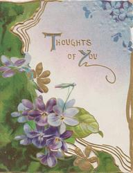THOUGHTS OF YOU in gilt above violets & heavy green perforated design left