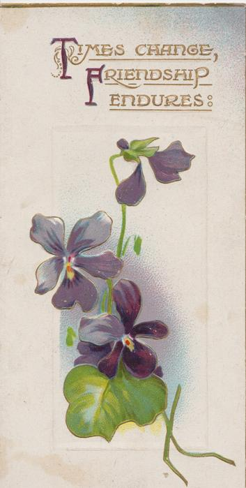 TIMES CHANGE, FRIENDSHIP ENDURES(T & F illuminated) in gilt above violets