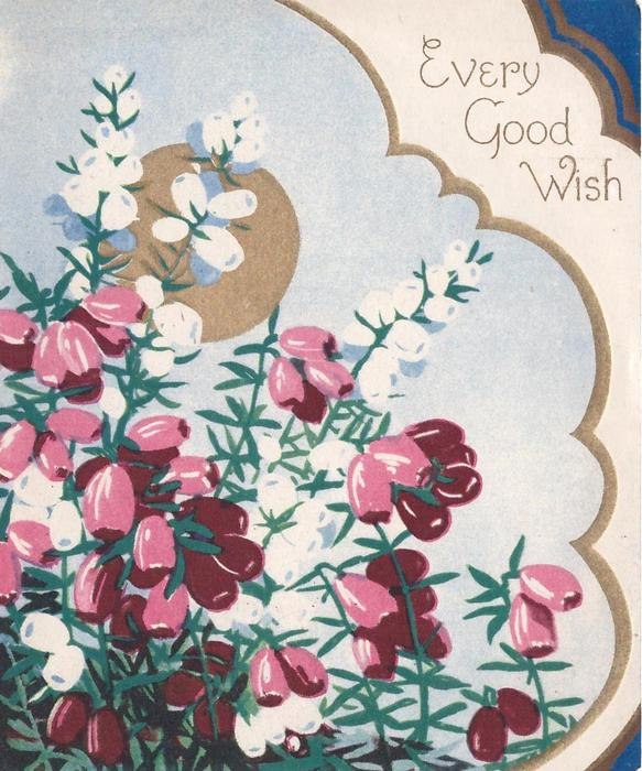 EVERY GOOD WISH top right, purple & white heather with gilt circle behind