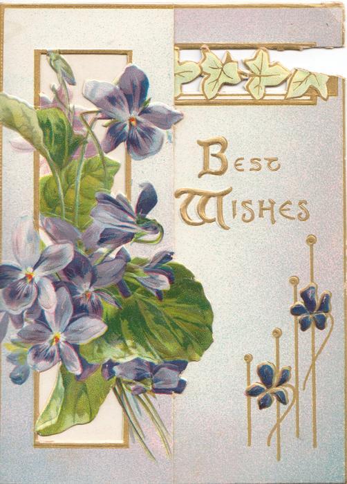 BEST WISHES in gilt ,violets & gilt design left, more violets around, stylised ivy leaf design on back flap