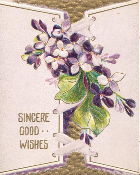 SINCERE GOOD WISHES in gilt below lilac seeming to come through window above