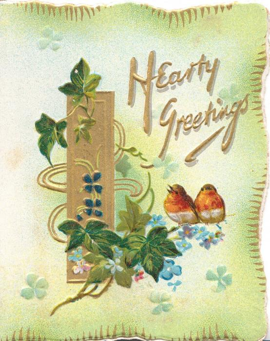 HEARTY GREETINGS in gilt, ivy leaves twined round gilt plaque, 2 robins perch, scant forget-me-nots below