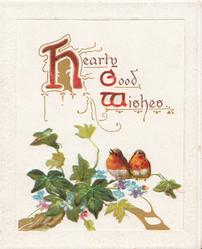 HEARTY GOOD WISHES( H,G,& W illuminated) 2 robins perch on ivy leaves, scant forget-me-nots below