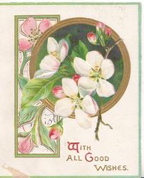 WITH ALL GOOD WISHES(W & G illuminated) below pale pink wild roses over complex perforated design