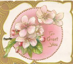 TO GREET YOU in gilt beside pale pink wild roses, brown & green marginal design