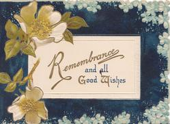REMEMBRANCE AND ALL GOOD WISHES on white plaque, white wild roses left, forget-me-not border, black background