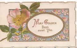 MAY GOLDEN DAYS AWAIT YOU on white oval plaque, below pale pink wild rose left over complex design