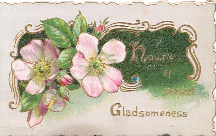 HOURS OF PERFECT GLADSOMENESS  pink wild roses over gilt & green design