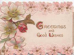 GREETINGS AND GOOD WISHES (G & W illuminated) on pink background, white wild roses left, pink rose designs above & below
