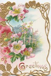GREETINGS(G illuminated) below pink wild roses around garden inset, marginal perforated gilt design