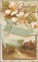 GREETINGS(G illuminated) above white wild roses over printed blue ribbon & rural inset