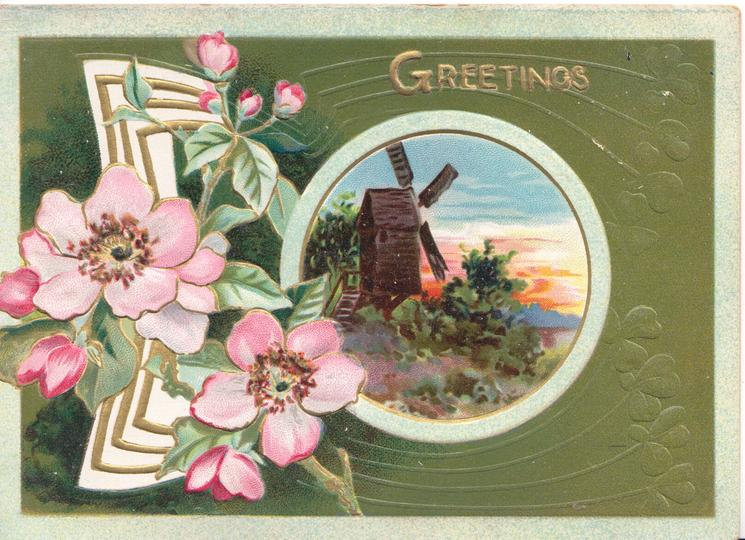 GREETINGS in gilt top, pink wild roses & gilt/white design left of rural inset-windmill, green background