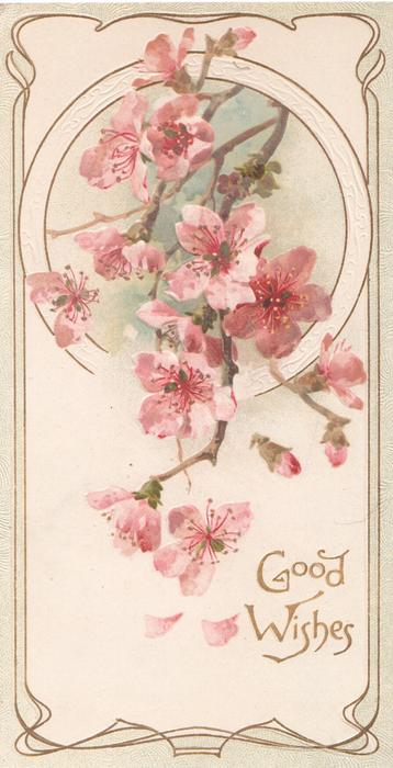GOOD WISHES in gilt below pink wild roses coming through circular design
