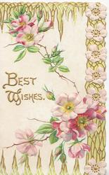 BEST WISHES in gilt on white background, pink wild roses & design around