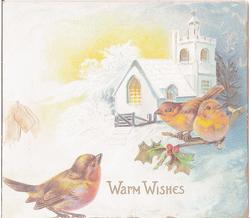 WARM WISHES, three robins, two on holly branch, cabin in background