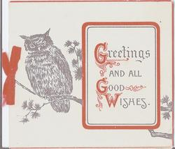 GREETINGS AND ALL GOOD WISHES owl perched on branch beside plaque with text