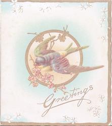 GREETINGS robin flying with flowers in beak