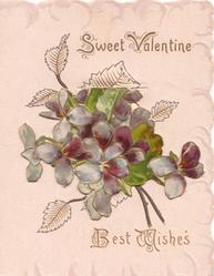 SWEET VALENTINE  BEST WISHES (illuminated letters) above violets on flap hiding rural inset & windmill