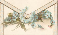no front title, sprays of blue forget-me-nots lying horizontally, partly under flap with horseshoe of forget-me-nots