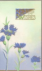 BEST WISHES(B & W illuminated) in gilt above blue cornflowers