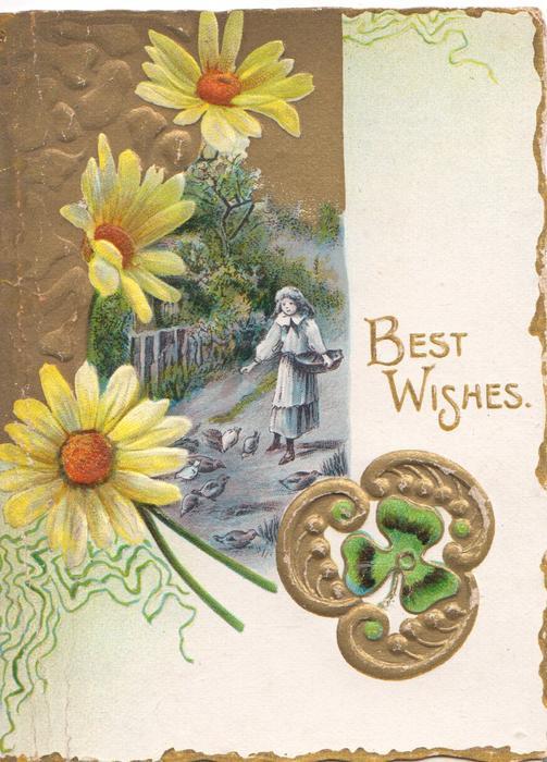 BEST WISHES in gilt, 3 yellow daisies left, rural inset of girl feeding birds, gilt & green clover design lower right