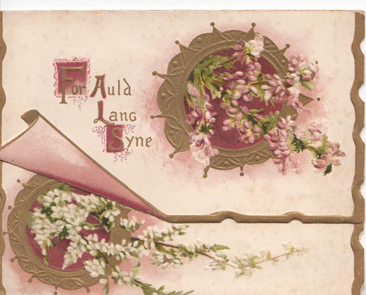 FOR AULD LANG SYNE in gilt left of gilt design & pink heather, white heather on flap below