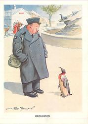 GROUNDED man in blue air force uniform looks down at penguin