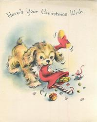 HERE'S YOUR CHRISTMAS WISH golden puppy tugs on X-mas stocking, emptying its contents
