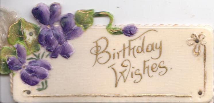 BIRTHDAY WISHES in gilt below spray of violets