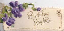 BIRTHDAY WISHES in gilt below spray of violets