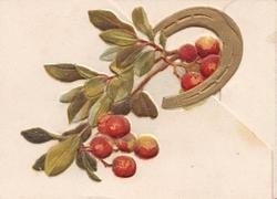 no front title, gilt horseshoe around mistletoe with red berries
