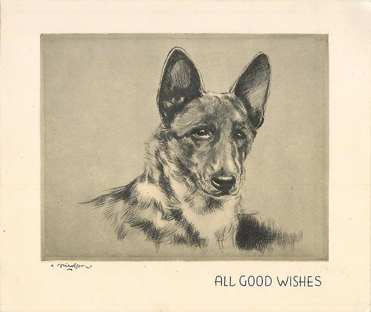 ALL GOOD WISHES head & shoulders sketch of shepherd, yellow/grey background