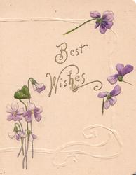 BEST WISHES in gilt, violets around, pale pink background