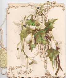 ALL GOOD WISHES in gilt lower left, holly leaves & snowdrops on both flaps, back & around large perforation, gilt & white marginal designs