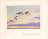 SEASON'S GRETINGS 5 mallard ducks fly left in cloudy sky at sunset