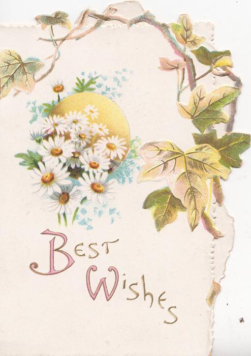 BEST WISHES(B & W illuminated) in gilt below forget-me-nots & white daisies with yellow centres, ivy top & right