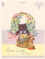 GOOD LUCK TO YOU! black cat wearing blue bow in floral basket, puppy figurine beside