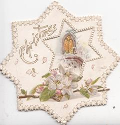 CHRISTMAS in white upper left, pink & white embossed wild roses at base, star shaped perforatIion reveals lighted church