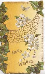 GOOD  WISHES below bumble bee & white apple blossom over cobweb, ivy on corners & left side